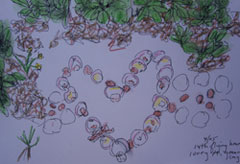 Alicia's drawing documents a flying heart made of seashells that she created in the Caymen islands, in the Carribbean.